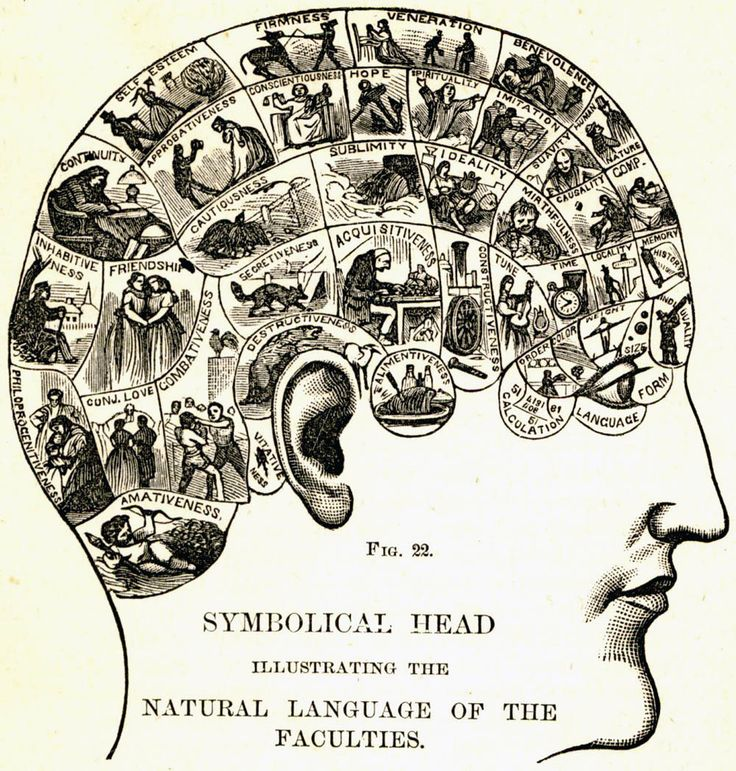 phrenology map: 'symbolic head illustrating the language of the faculties' - circa mid-late19th century [link to a selective overview of 'on the map' by simon garfield: the history of cartography from the new world to google; part of a 'don't panic' article by jade french, 2012]