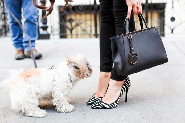 Zebra heels + mini Fendi.
