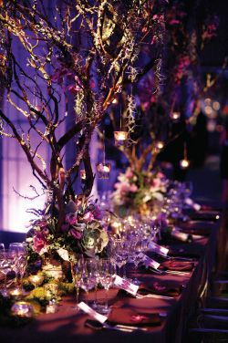 Enchanted forest wedding, need opinions please! :  wedding branches centerpieces enchanted forest manzanita trees woodsy Branches1