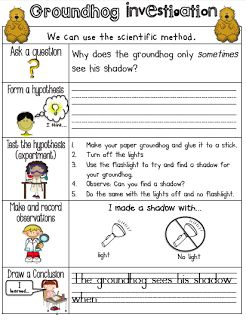 Sarah's First Grade Snippets: Groundhog Shadow Investigation