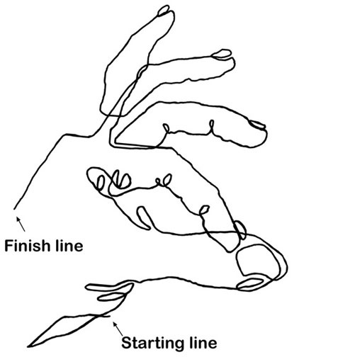 Weighted Contour Line Drawing : Best images about contour line on pinterest