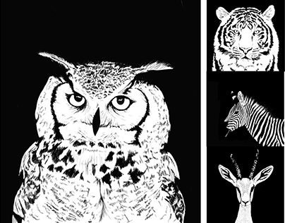 """Check out new work on my @Behance portfolio: """"Black and White illustrations"""" http://be.net/gallery/38024119/Black-and-White-illustrations"""