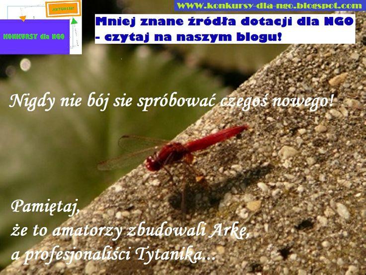 Mniej znane źródła dotacji dla NGO - czytaj na naszym blogu http://konkursy-dla-ngo.blogspot.com/