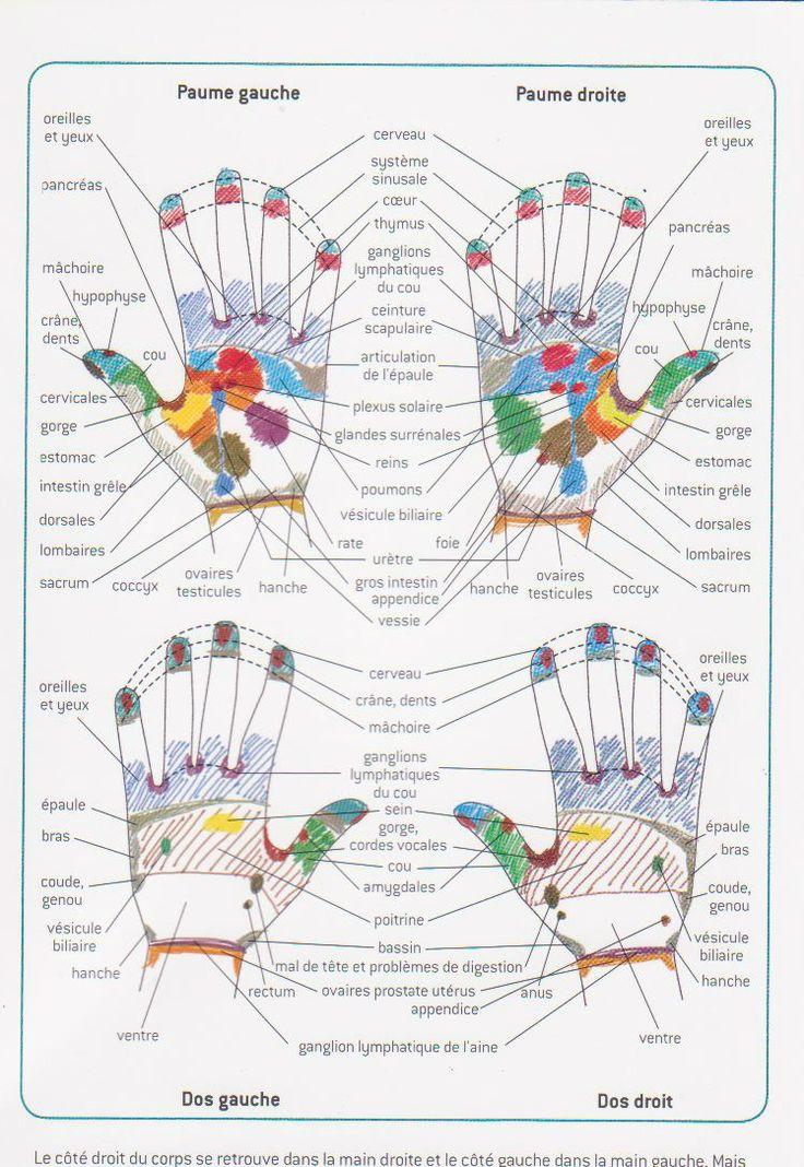 25 best ideas about reflexologie palmaire on pinterest for Douleur interieur pied gauche