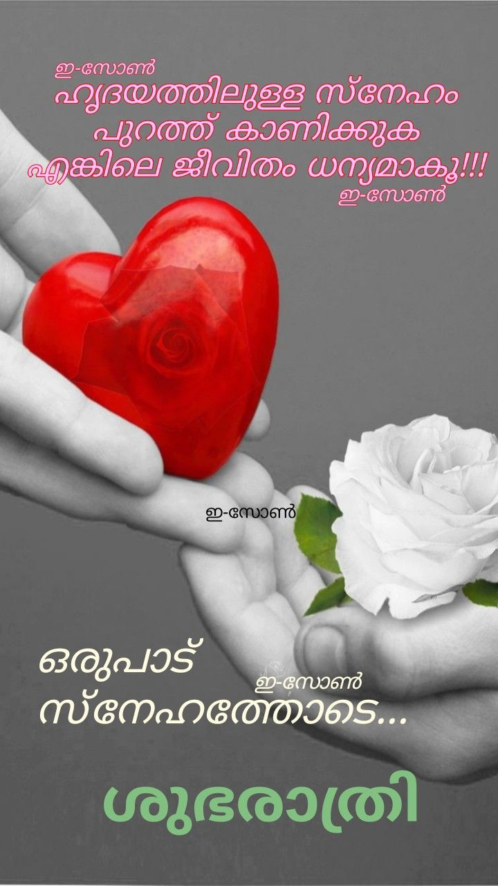 Pin By Eron On Good Night Malayalam Good Night Love Images Good Night Messages Good Morning My Love