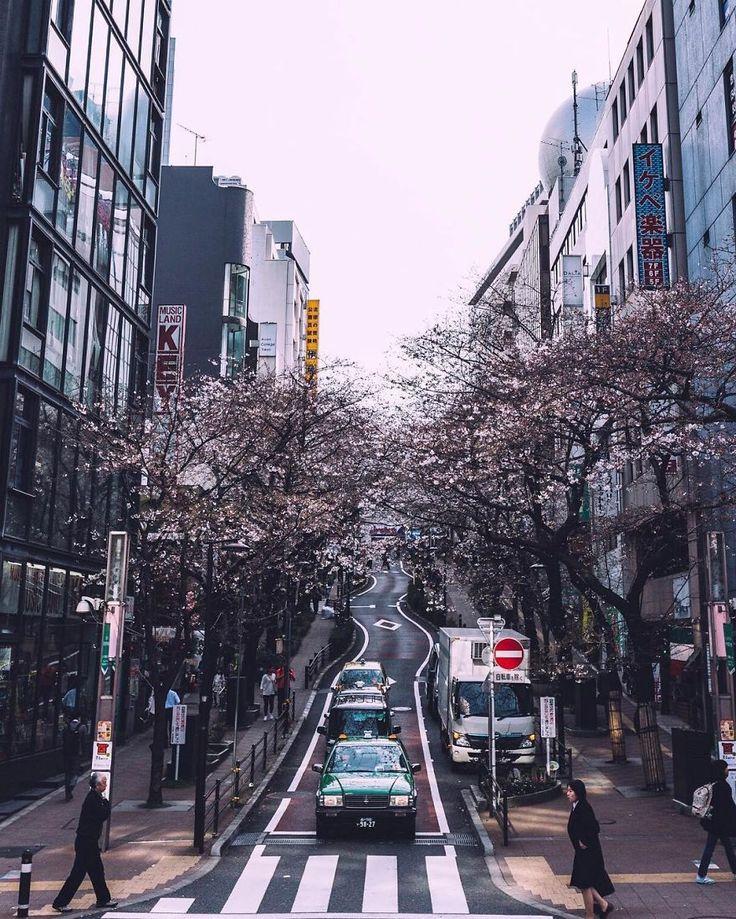 20 кадров уличной фотографии, которые открывают неизвестную сторону Японии: b_picture