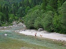 SLOVENIE, Soca, Leuke camping bij rivier soca.