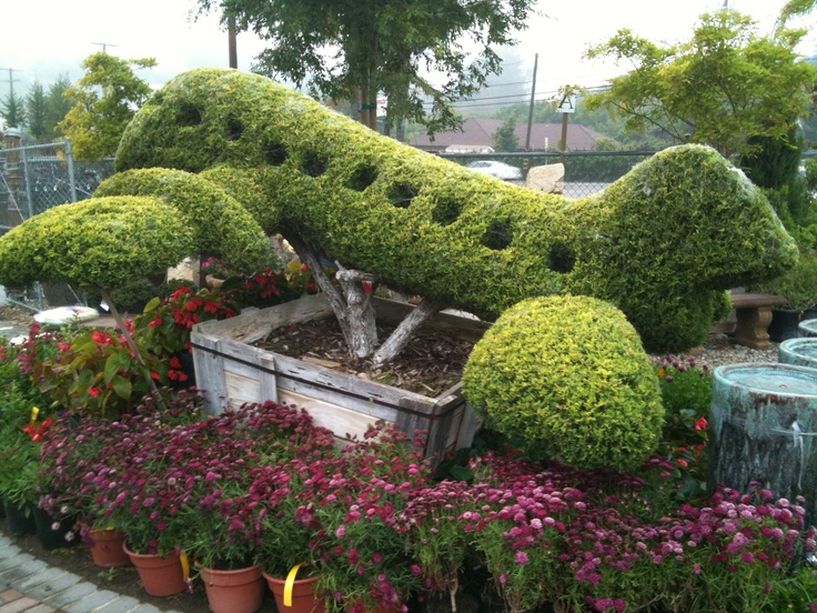 142 best terrific topiaries images on pinterest for Jardines espectaculares