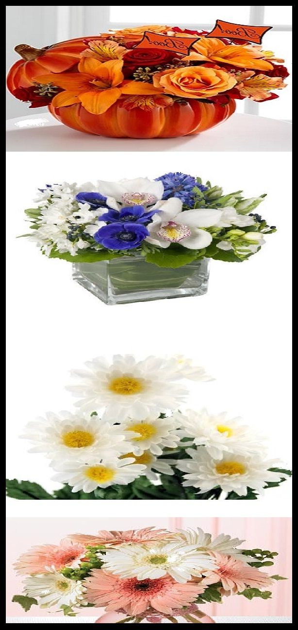Easy Flower Arrangements for Decorating Your Home