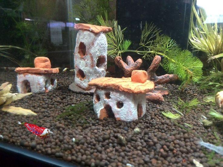 54 besten Häuser und Bäume   Wurzeln für das Aquarium Bilder auf - deko fur aquarium selber machen