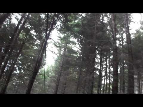 Zip line at ZipTrek Eco Tours - Part 1