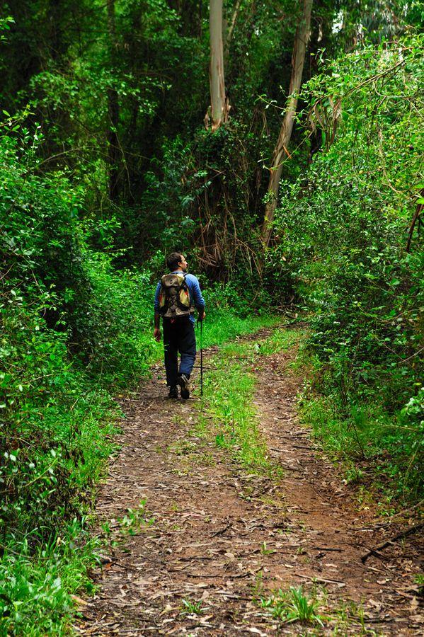 Explorando a Rota Vicentina/Exploring Vicentine Route - Costa Vicentina, Rota Vicentina, Alentejo Region, Portugal