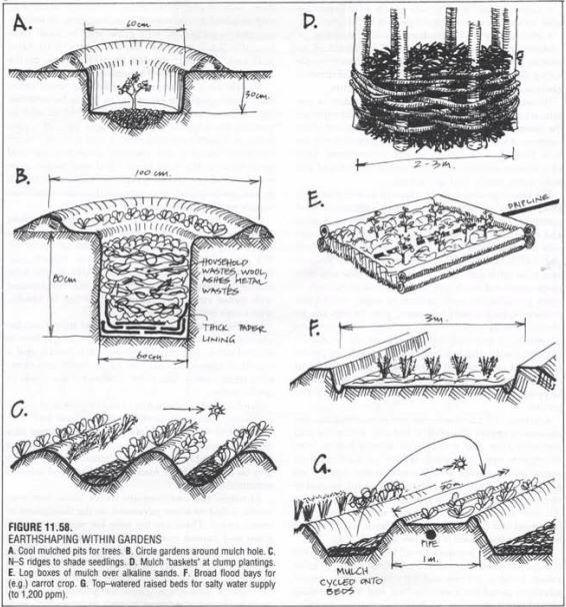Best 25+ Permaculture design ideas on Pinterest