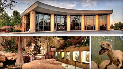 Visit Creation Museum - outside Cincinnati,OH. $5 discount with HSLDA membership. $5 discount on Adult tickets on Tuesdays and Wednesdays. 10% off purchase if Online.