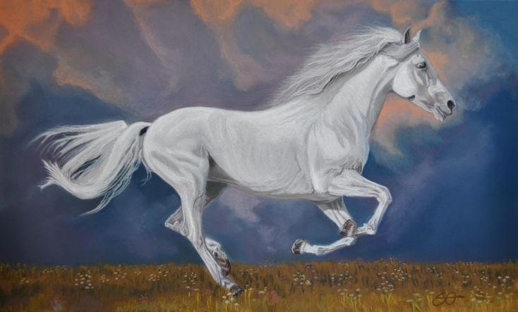 """""""White Wilde"""" Pastel on paper 29X42 by Stefano Orio"""