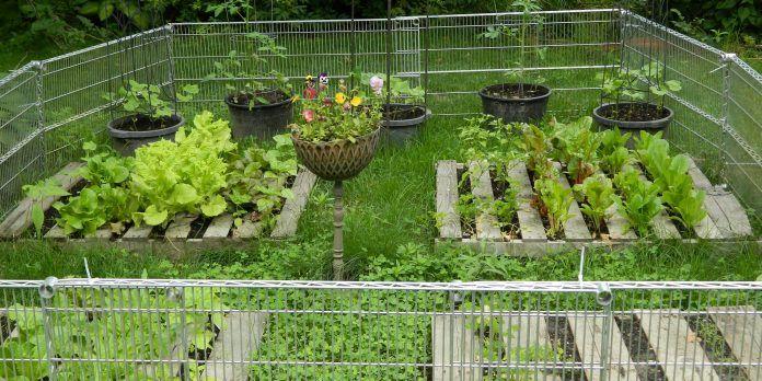 jardineras palets