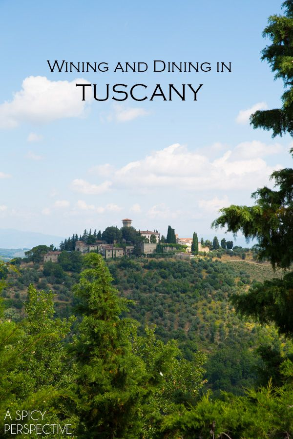 A Spicy Perspective Tuscany, Italy: Siena, Chianti, and Pisa - A Spicy Perspective