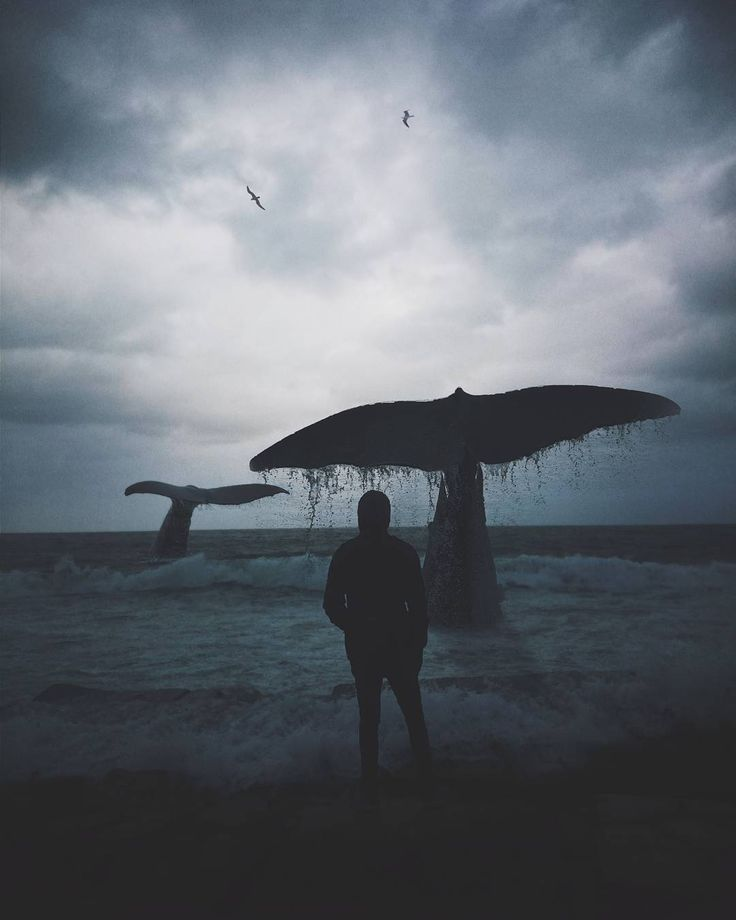 Photographer, art director and graphic designer based in Alexandria, Egypt, Hussam Eissa creates amazing manipulations that bring to life our craziest dreams. Hussam studied Electromechanical Engineering in Alexandria University. Currents of surrealism run through each story as whale fly through the