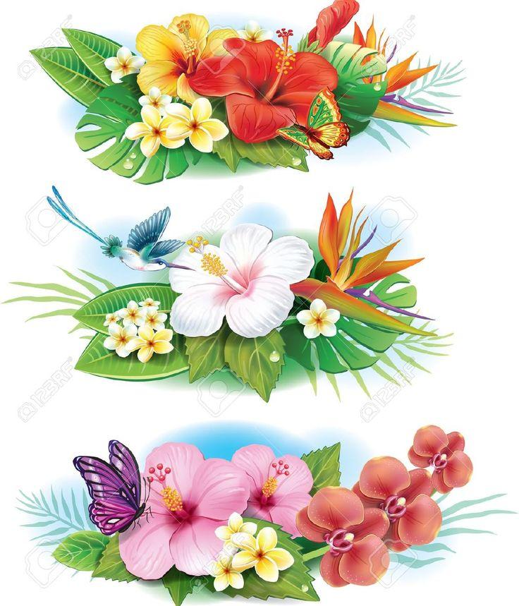 Arrangement De Fleurs Tropicales Clip Art Libres De Droits , Vecteurs Et Illustration. Pic 21670793.