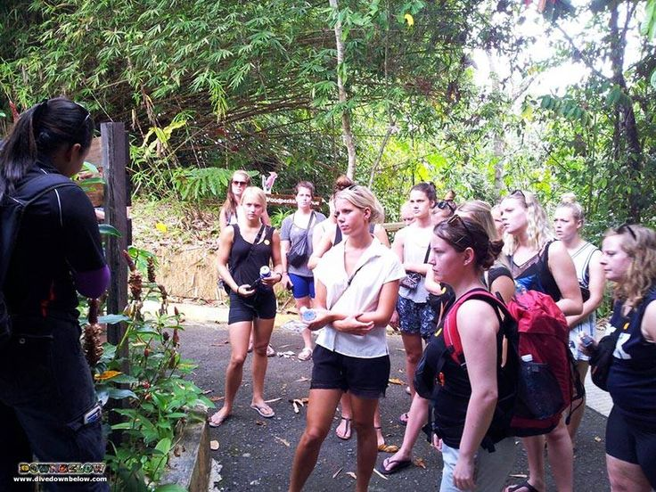 Nature guide Tiffany gives some interesting facts about the plants of the herb garden :)