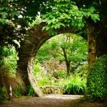 """Through the wall at Knockpatrick Gardens, Co Limerick. A journey to Ireland's """"prettiest village"""" leads to gardens, ruins, the discovery of Irish coffee, dolphin watching, and Europe's first international airport. via @Irish Fireside"""