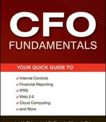 Cfo Fundamentals: Your Quick Guide To Internal Controls Financial Reporting Ifrs Web 2.0 Cloud Computing And More PDF