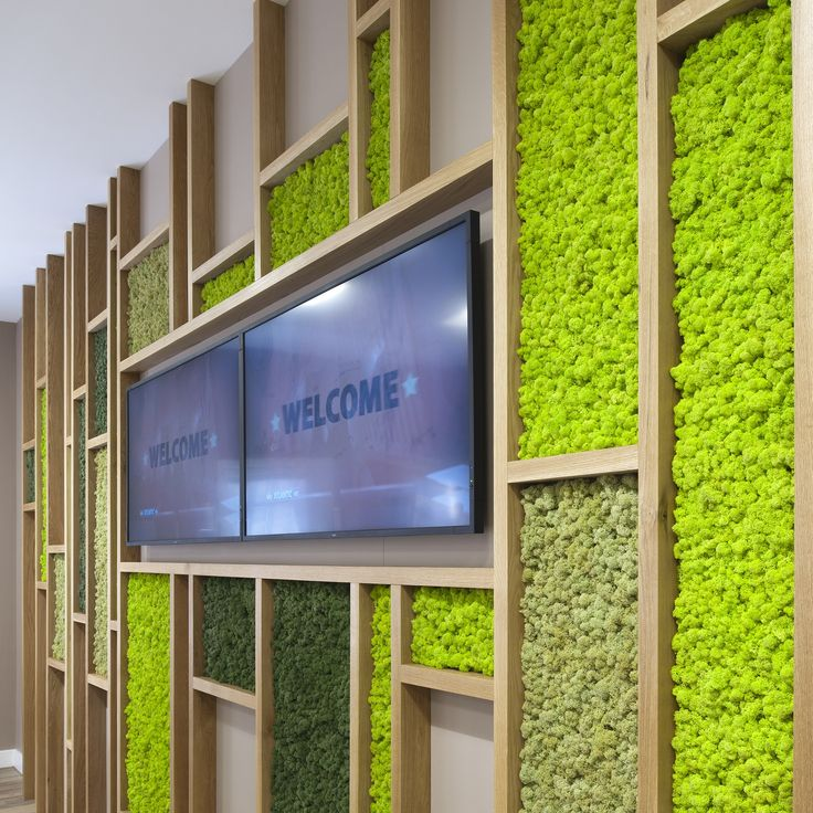 Create the breakout areas you desire with the freedom of Nordik Moss Walls. If you've got a design, we've got a plan. Get in touch or visit our website for more info.
