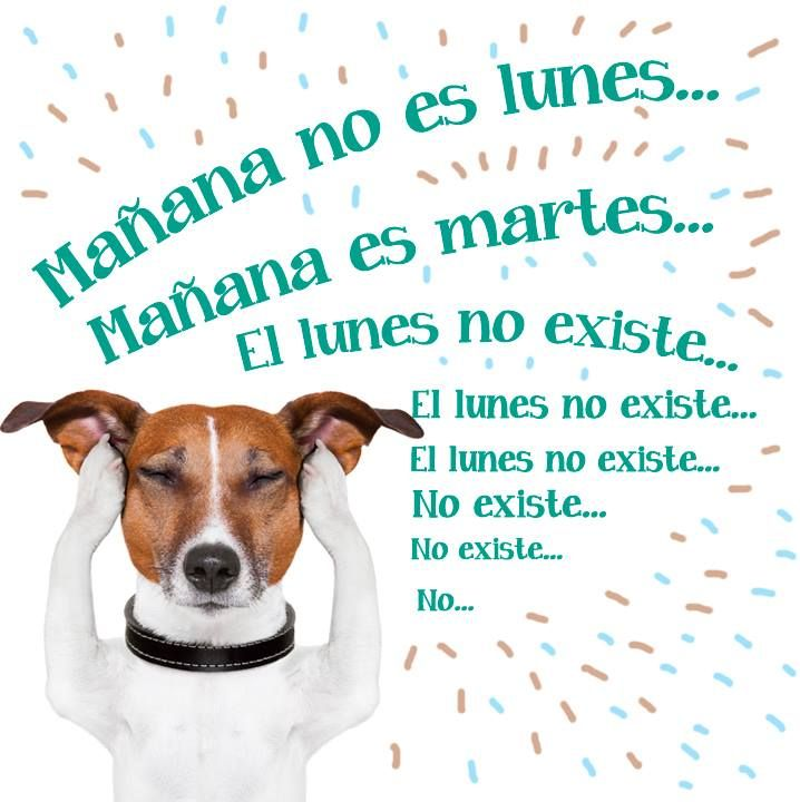 Mañana no es #Lunes... Mañana es #Martes... El #Lunes no ...