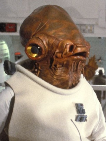 It's a trap! Actually, it's Star Wars day. May the 4th be with you.