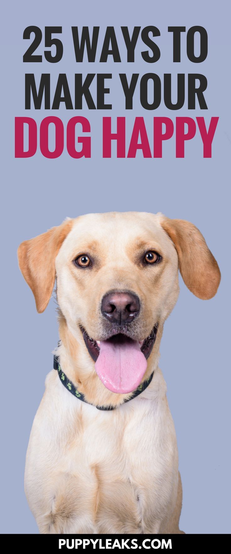 Looking for some simple ways to improve your dogs life? Here's 25 ways to make your dog happy. Fun games, toys & activities for your dog. Dog boredom buster ideas. Methods to keep your dog happy, healthy & entertained.