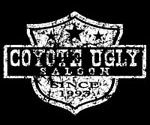 Coyote Ugly Saloon Las vegas, cool place but get there early or your waiting in line forever to get in