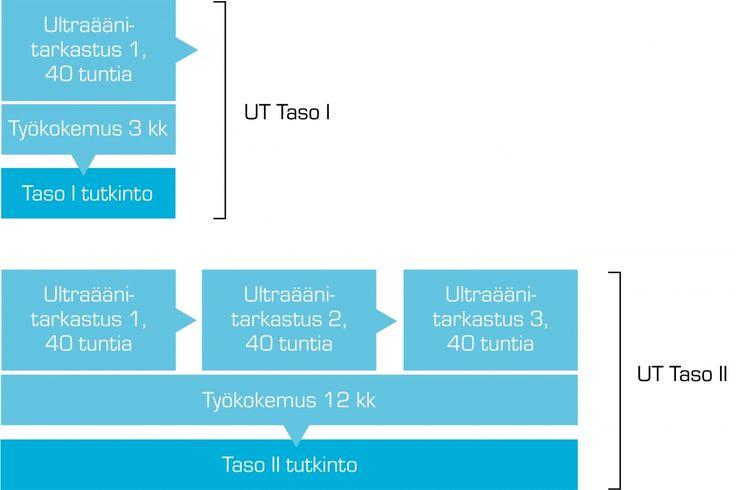Ultraäänitarkastus 1 | AEL - Elinkeinoelämän koulutuspalvelut
