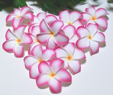 Foam Life Like Frangipani Heads in Pink Glow, sold in a Pack of 6