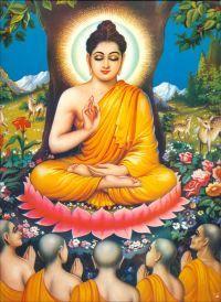 Se in battaglia un uomo ne vincesse mille, e un altro vincesse se stesso, il vero vincitore sarebbe il secondo. (Buddha)