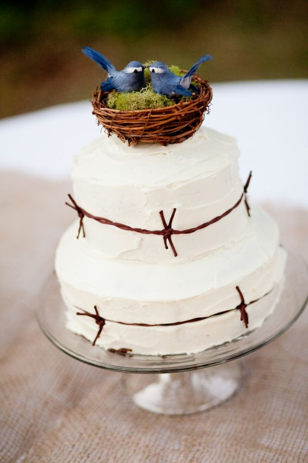 Rustic Wedding Cake With Blue Birds Nest Topper And Yellow