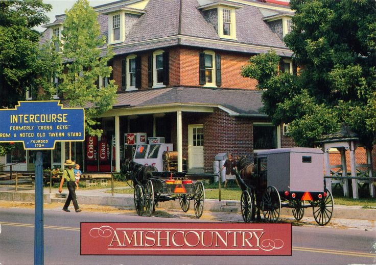 UNITED STATES (Pennsylvania) - Life in Amish Country (6)