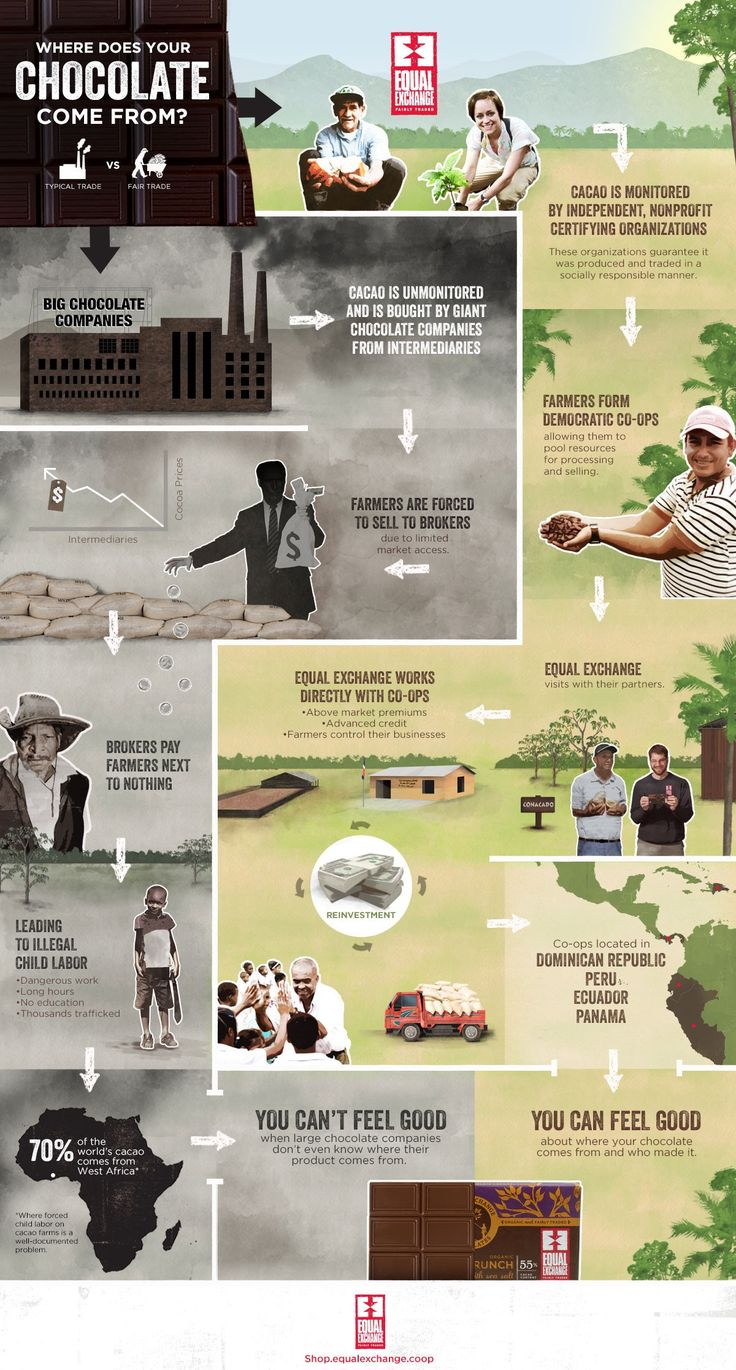 Fair Trade Chocolate Infographic - challenge yourselves to only buy fair trade chocolate! It's easier than you think!
