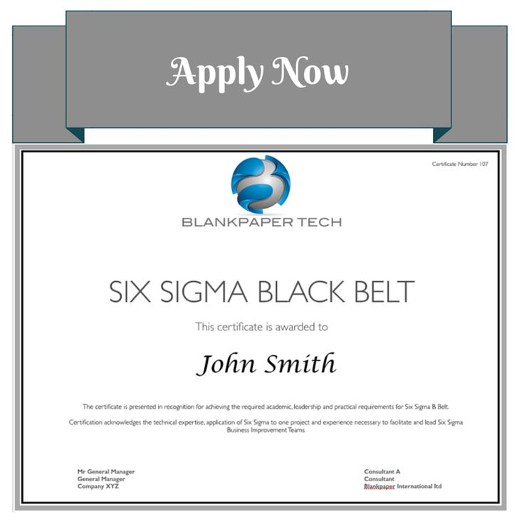 New On-line Six Sigma Certification www.blankpaper-int.com