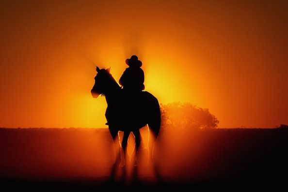 The sun rises behind a drover during the Great Australian Cattle Drive preview on May 7, 2009 in Oodnadatta, Australia. The Great Australian Cattle Drive will take place in 2010 and offers the general public the chance to experience an Australian adventure.