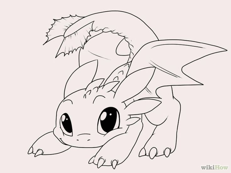 Image Result For Drawing Of Toothless The Dragon Easy Easy Dragon Drawings Cute Cartoon Drawings Toothless Drawing