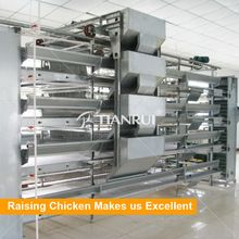 Poultry Equipment, Layer Equipment, Broiler Equipment direct from China (Mainland)