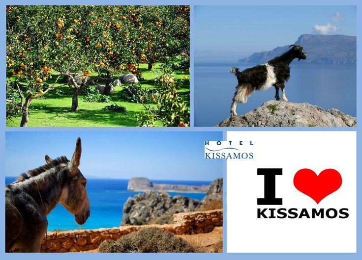 #kissamos_is_beautiful #ilovekissamos #kissamos_hotel