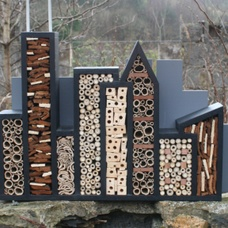 Bee City, Cityscape for Solitary Bees.