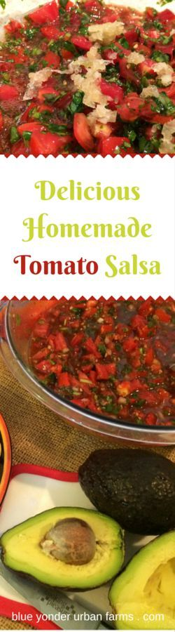 Delicious Homemade Tomato Salsa | Blue Yonder Urban Farms | Karen Coghlan | /explore/homemade/ /search/?q=%23tomato&rs=hashtag /search/?q=%23salsa&rs=hashtag /search/?q=%23easy&rs=hashtag /search/?q=%23sugarfree&rs=hashtag /search/?q=%23flourfree&rs=hashtag /search/?q=%23brightlineeating&rs=hashtag /search/?q=%23mybrightlines&rs=hashtag /search/?q=%23bright&rs=hashtag /search/?q=%23line&rs=hashtag /search/?q=%23eating&rs=hashtag /explore/paleo/ /explore/whole30…