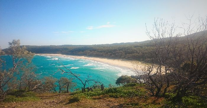 Top 8 Things To Do In Noosa, Australia