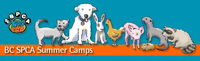 BC SPCA Summer Camps - Offering summer camps at the BC SPCA where you'll get to spend your days immersed in the world of animals. Play animal-themed games, meet animal experts and get crafty. Connect with new friends (both furry and human) and become the expert on animals in your family! You'll have the chance to interact with some of the friendliest cats and small animals at the shelter, as well as some lovable dogs. #VictoriaBC #Victoria #KidsActivities #KidsCamps #KidsInVictoria