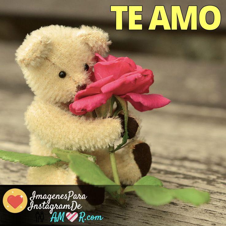 Ositos con flores y frase te amo