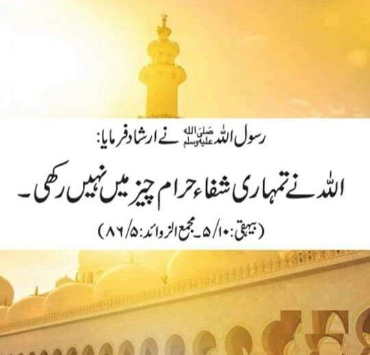 Quotes In Urdu: 1082 Best Islamic Quotes In Urdu Images On Pinterest