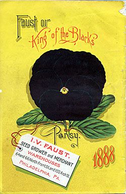 I. V. Faust 1888: Vintage Flower, Vintage Seeds Packets, Gardens Catalogue, Seeds Packets Black, Seeds Packaging, Seeds Catalogue, Packets Black Pansies, Vintage Gardens, Institut Libraries