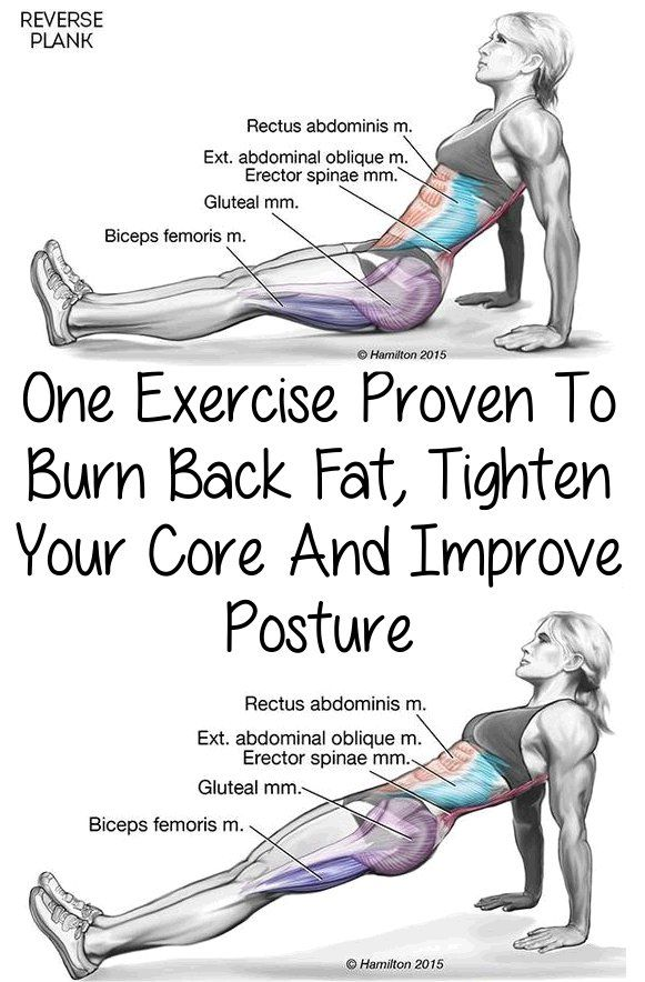Okay, today you're going to learn how to reverse plank. One of the first places you gain weight is typically around your belly. Also back fat is one of t